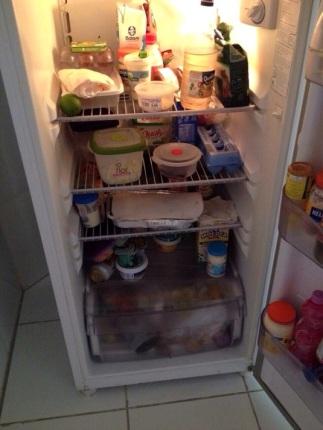 Para evitar confusão, cada uma ficou com um andar da geladeira, o freezer é de uso comum (Foto: Thiago Moura e Caio Moreira)