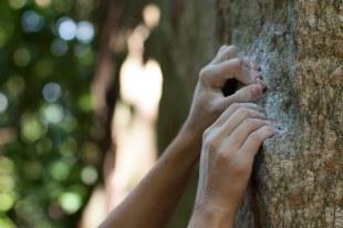 Detalhe das mãos da escaladora com magnésio, Uraca, Rio de Janeiro