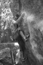 Antônio Monteiro escalando no Parque Estadual do Grajaú na cidade do Rio de Janeiro
