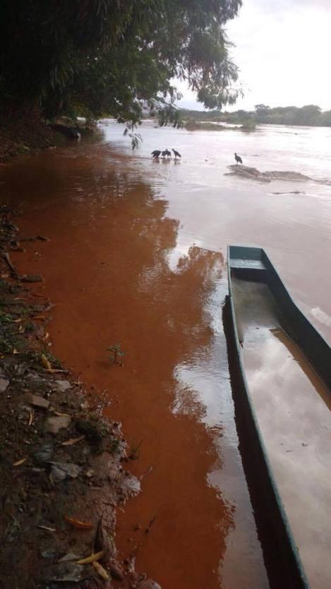 O rio, denso e de tom marrom-avermelhado. Foto: via Whatsapp